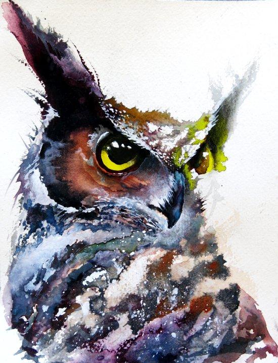 Daniel Luther pinturas aquarelas cores pássaros corujas espacial