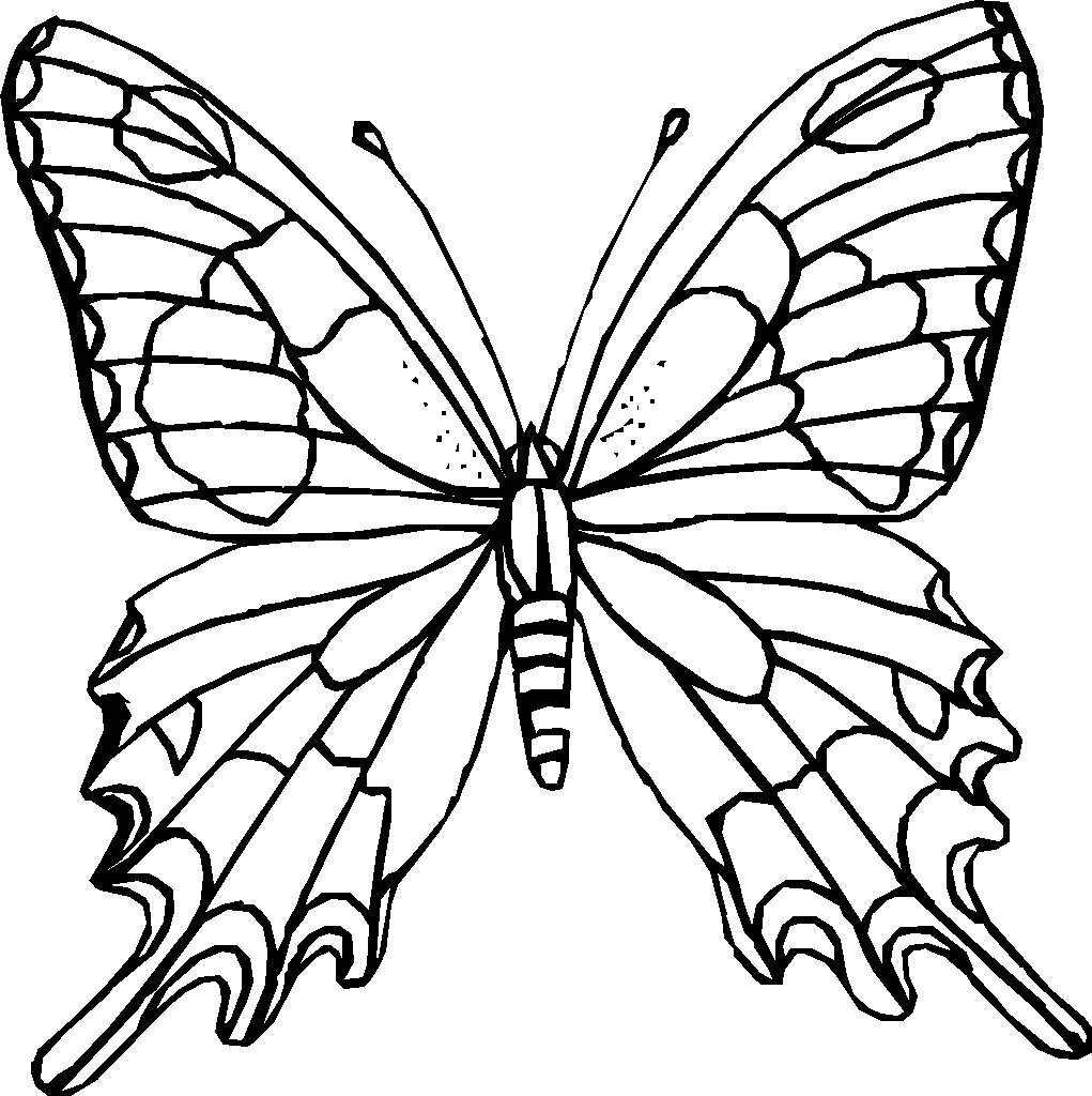 White Butterfly Coloring Pages To Print