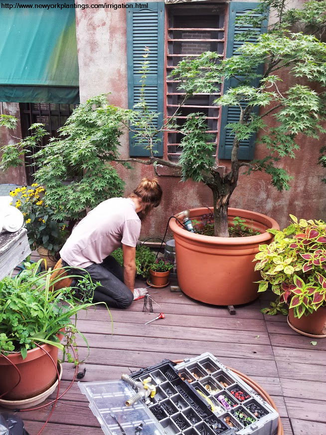 Manhattan Rooftop Gardeners New York Plantings Garden Designers