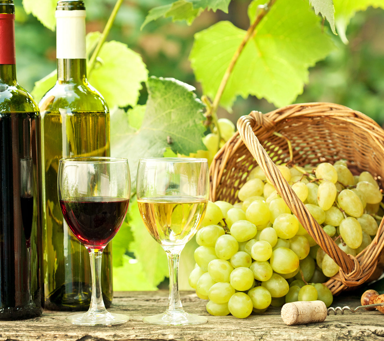 http://1.bp.blogspot.com/-8enqLuxyjq0/ULUKz1lk_4I/AAAAAAAALeM/JlUYj8nCzFQ/s1600/wine-hd-samsung-galaxy-s3-wallpaper.jpg