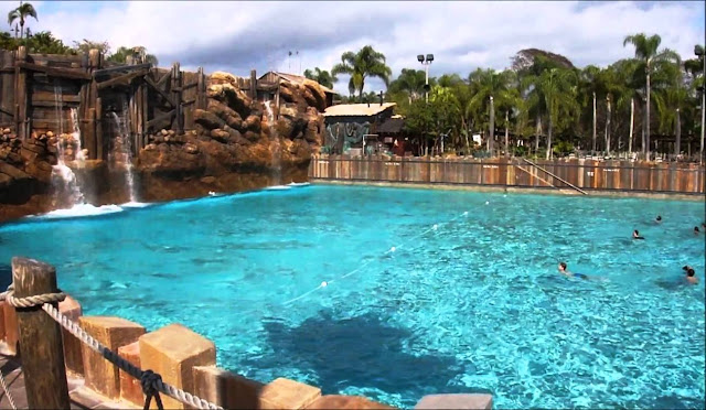 Typhoon Lagoon Disney Piscina