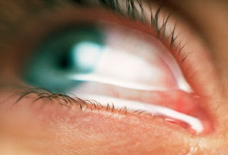 Unique Facts About Human Eyes