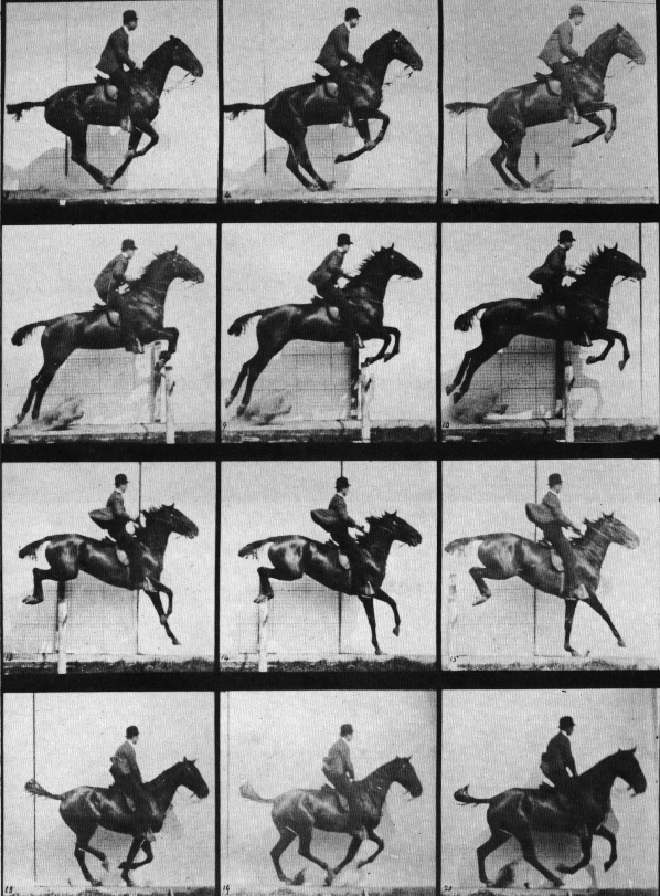 the galloping horse in the horse in motion a photography by edward muybridge Eadweard muybridge was the man he proved his theory by getting a galloping horse to trigger creating world-famous images of animals and humans in motion.