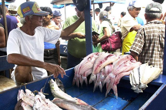 O umami, o quinto sabor, está presente em alimentos como os peixes