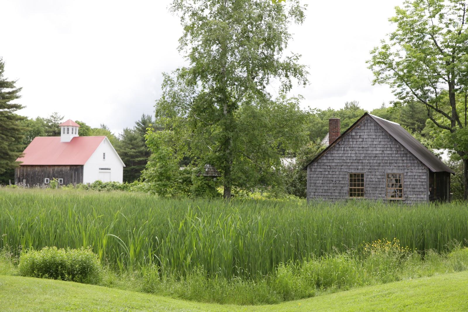 Musterfield Farm – Concord Food Co-op