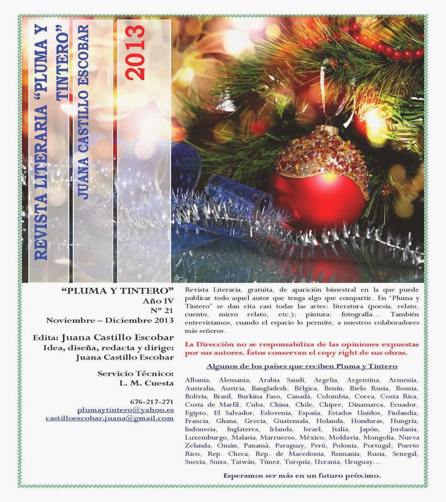 Nº 21 - Año IV - Noviembre-Diciembre 2013