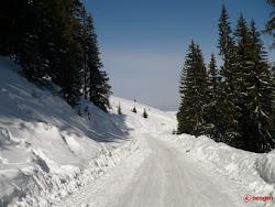 Drum alb,prin verde,spre albastru!!!