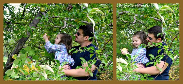 Dad holding up girl to pick apples