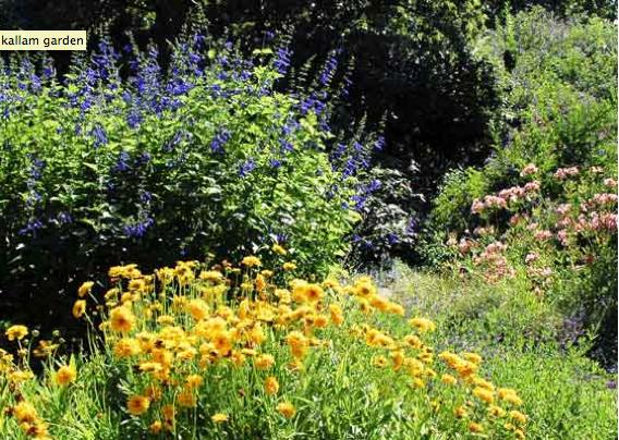 Eve4art L A County Arboretum Botanic Garden