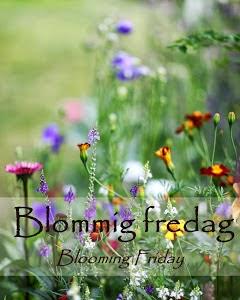 http://www.blandrosorochbladloss.blogspot.se/2014/01/premiar-blommig-fredag.html