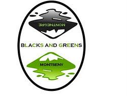 QUEDADA 18-12-2011 CON MOTIVO DE INAUGURACION DE LA EQUIPACION DE BLACKS AND GREENS