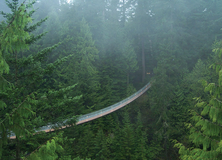Capilano Suspension Bridge Park Admission (8 Image)