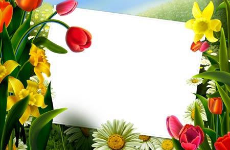 flowers for flower lovers.: Flowers photo frames designs ideas.