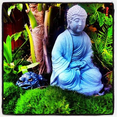 You Can Grow Ideas Center For Spiritual Living Capistrano Valley