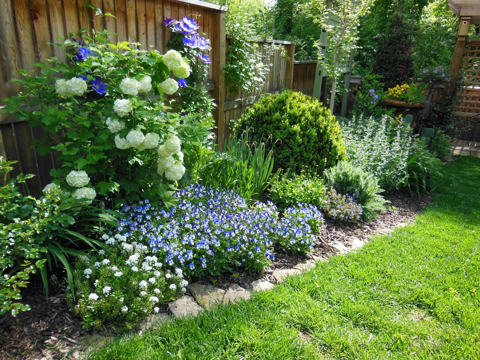 Irish cottage garden lavender blue garden design for Irish garden designs