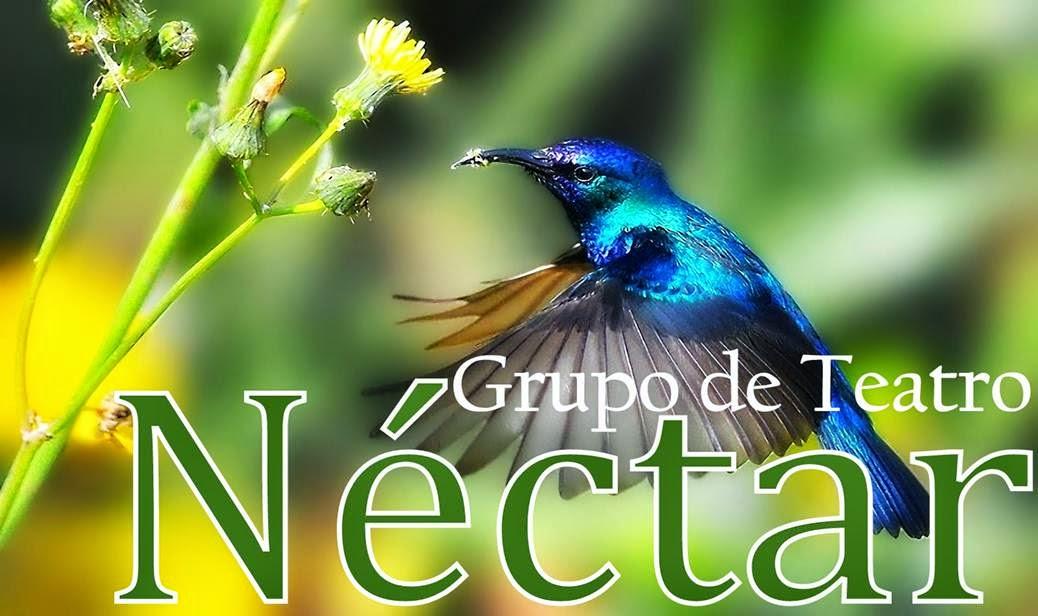 Grupo de Teatro Néctar