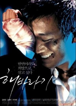 Hoa Hướng Dương - Sunflower (2006) Poster