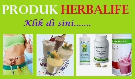 diet herbalife sebulan