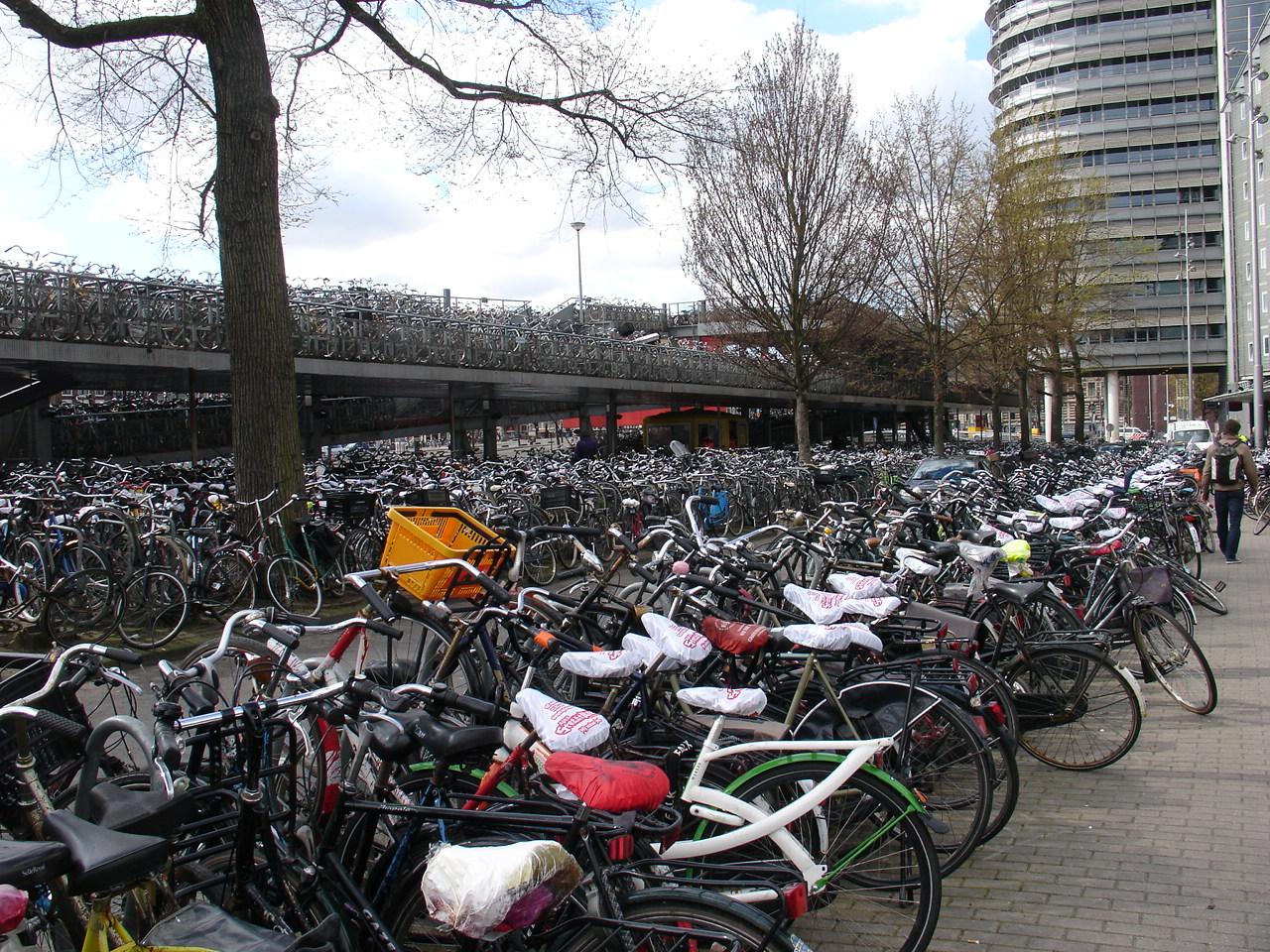 Che Pianeta faremo: Amsterdam ecologica