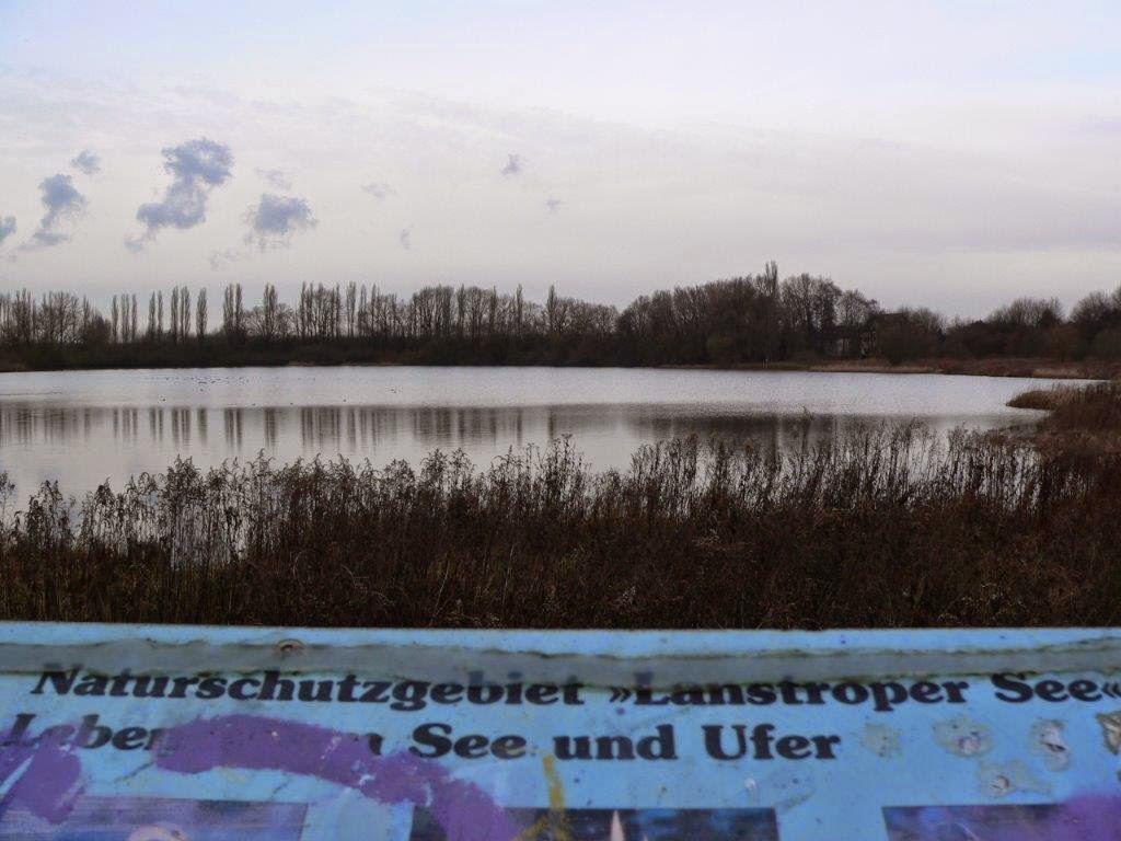 Dortmund Spaziergang Hunderunde