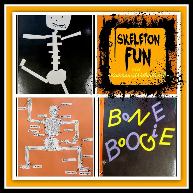 photo of: Skeleton Fun: Art and Identification via RainbowsWithinReach
