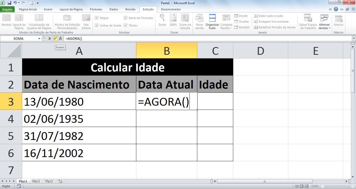 O Melhor do Excel Calcular idade no Excel