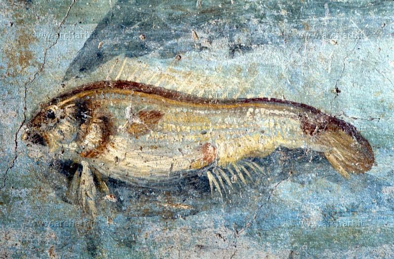 Il giardino delle naiadi allevare pesci nell 39 antica roma for Pesce pulitore acqua dolce