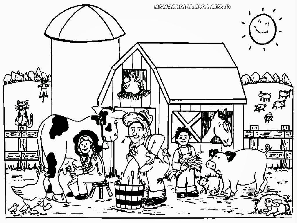 mewarnai gambar peternakan sapi