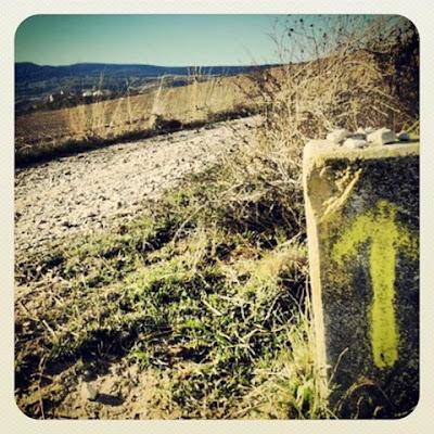 Camino de Santiago; camino de baldosas amarillas. El perdón.