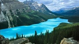 Danau Peyto, Alberta, Kanada