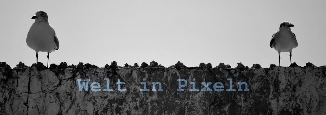 Welt in Pixeln