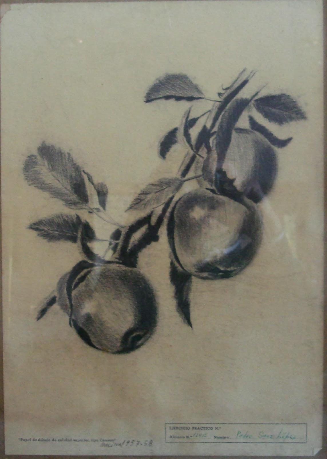 MOLINA DE LOS CABALLEROS 3 manzanas