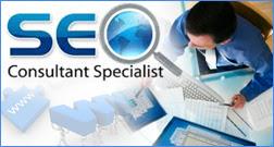 SEO consultant Dovetanet Marketing