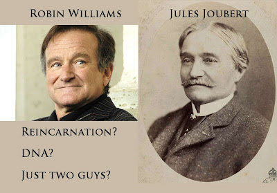Robin Williams, Jules Joubert, DNA, ancestry, reincarnation, phenomena
