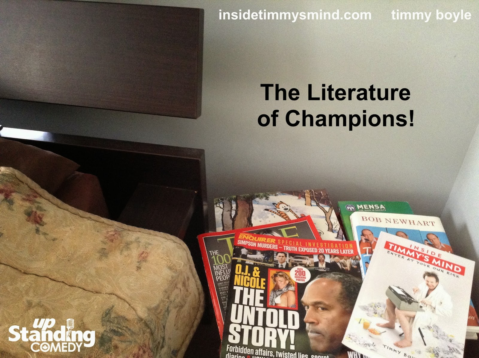 Inside Timmy's Mind - The Literature of Champions