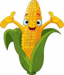 Health benefits of Corn - Corn Helps to Decrease Cholesterol Level In Blood