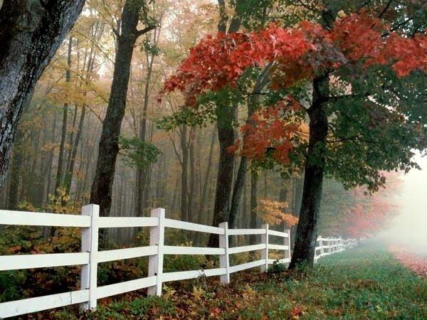 jesiennie II