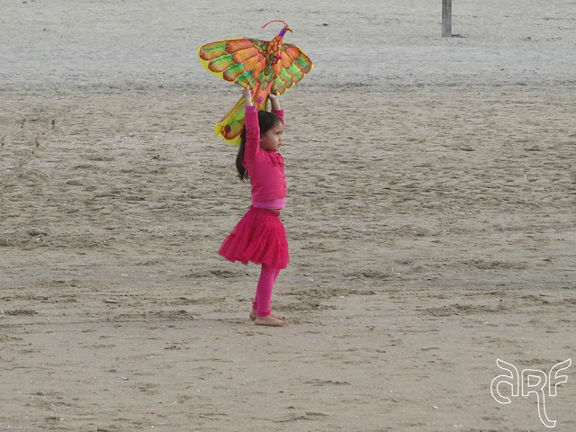 girl holding up a kite
