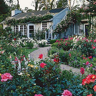 English country cottages cottage garden plants and for Cottage garden plants