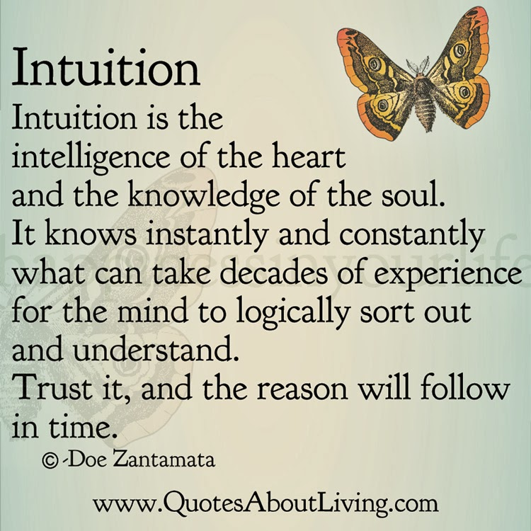 Intuition Quotes Gorgeous Quotes About Living Doe Zantamata Intuition Intelligence Of The