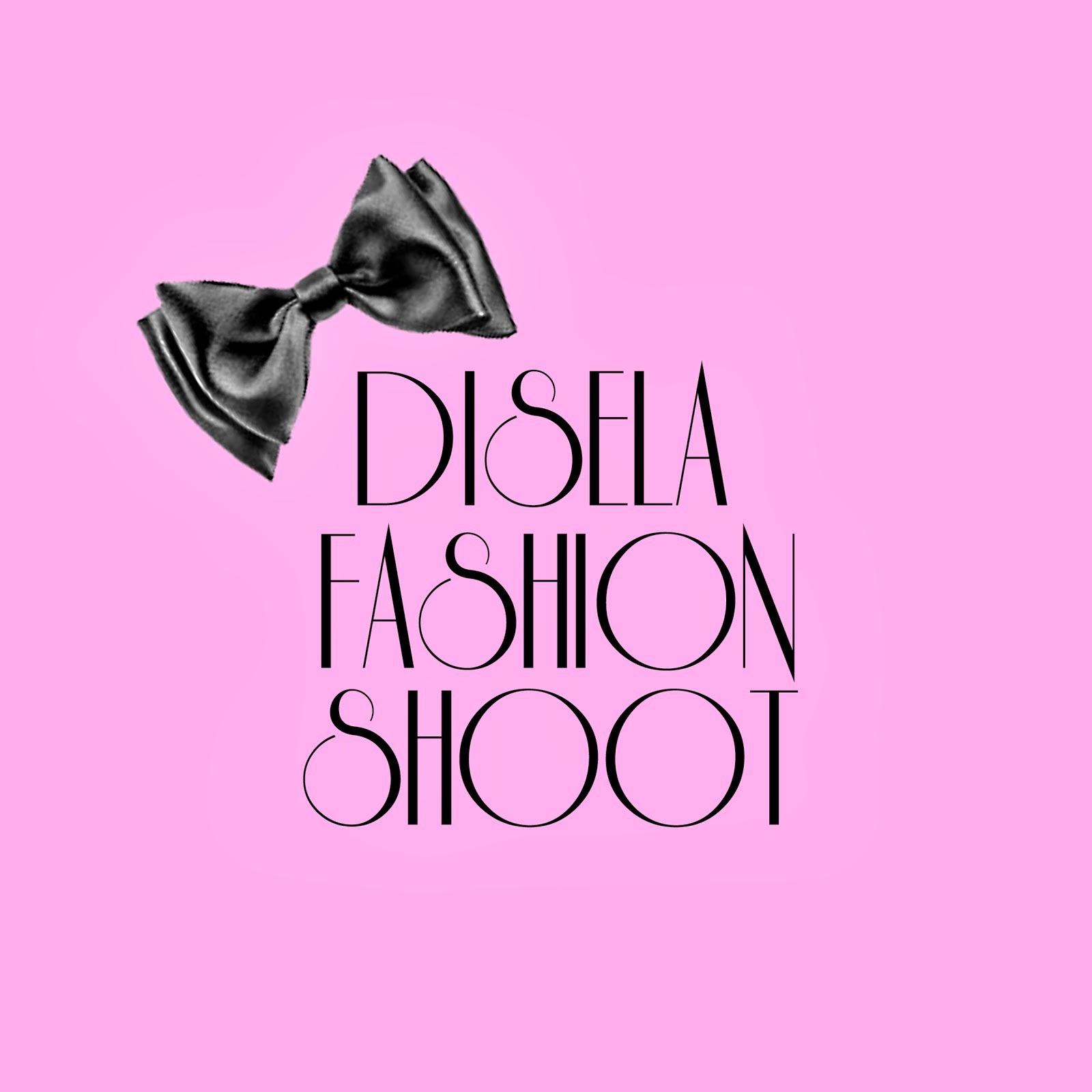 Disela Blog