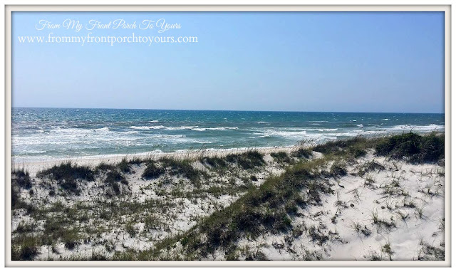 Cape San Blas, Florida-The Forgotten Coast- From My Front Porch To Yours