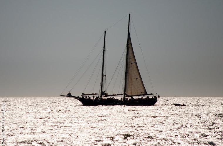 Por mares nunca dantes navegados...
