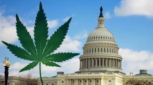 Washington e a legalização da maconha