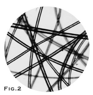 Nylon fiber market analysis