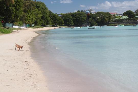 Mauritius Beach Resort Pereybere