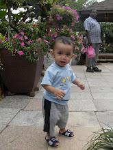 Amsyar 1 Year