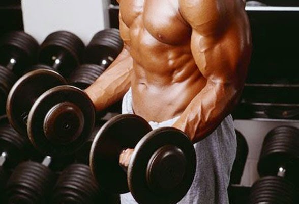 The Best Exercises to Build Muscle and Create Your Ultimate Body