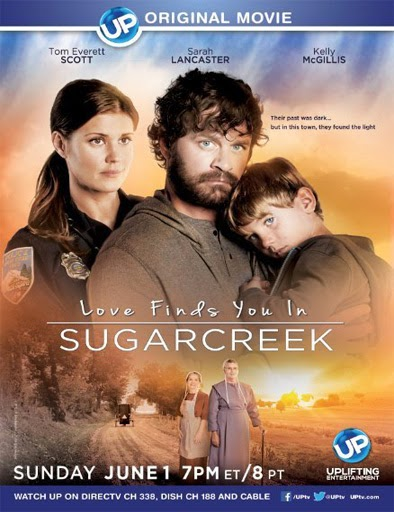 Ver Love Finds You in Sugarcreek, Ohio (2014) Online