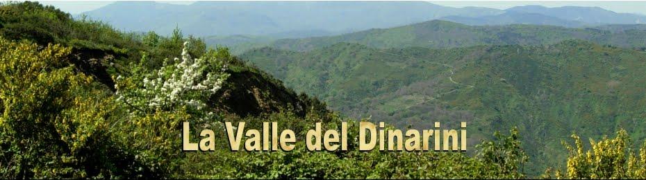 La Valle del Dinarini